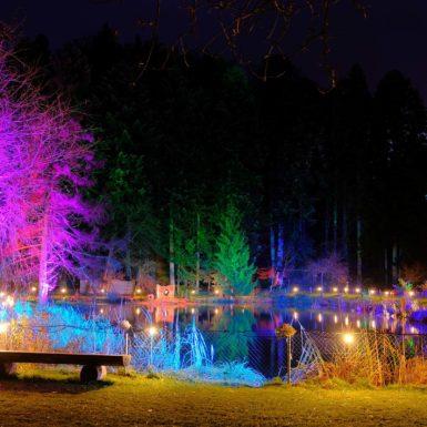 Lichtweg 2019 | Weyer | Umgebung im Bürgisweyerbad